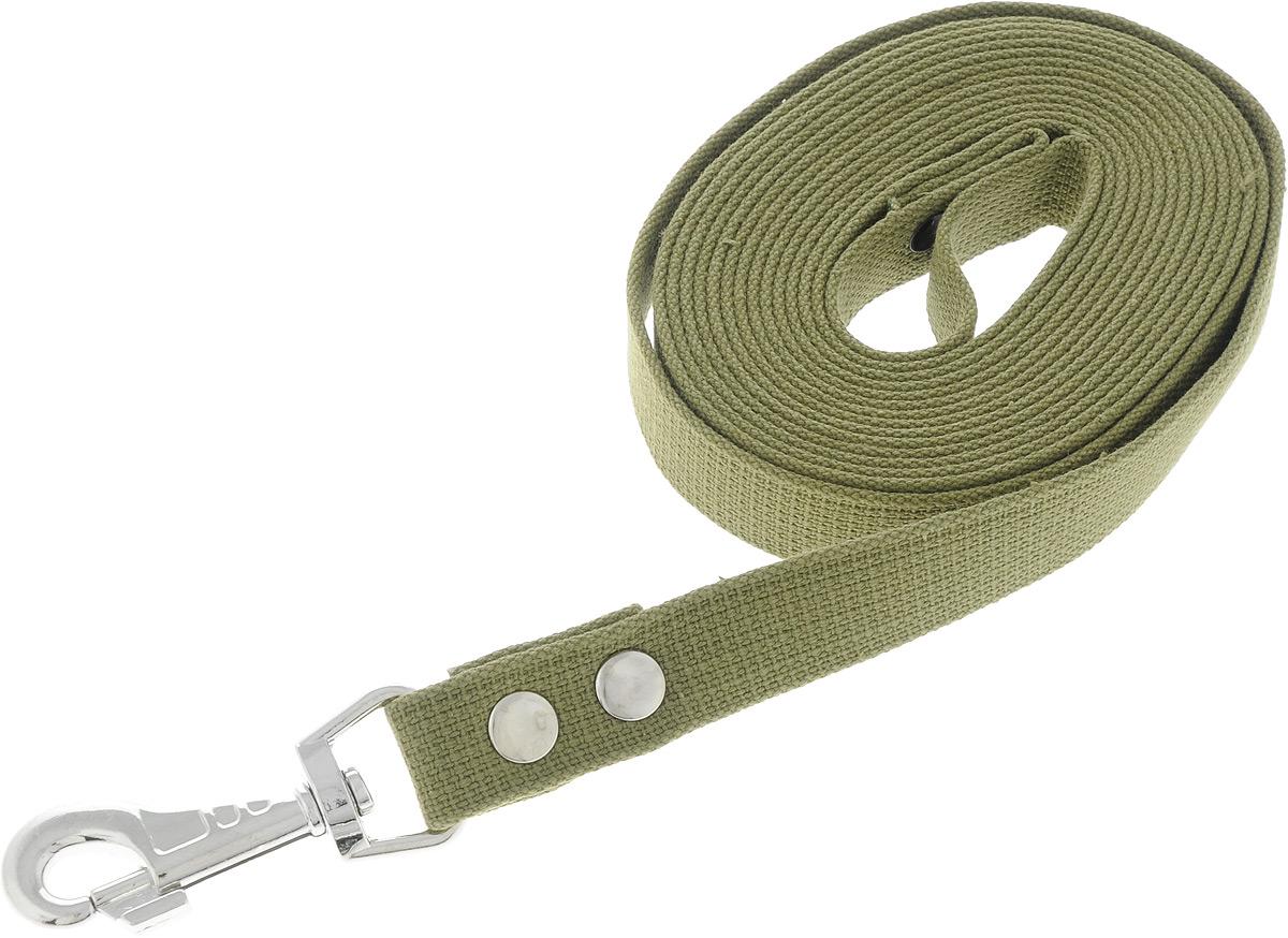 """Поводок брезентовый для собак """"Adel-Dog"""", ширина 2,5 см, длина 5 м"""
