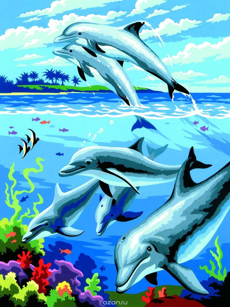 Royal & Langnickel Картина по номерам Дельфины раскраска по номерам радужные дельфины