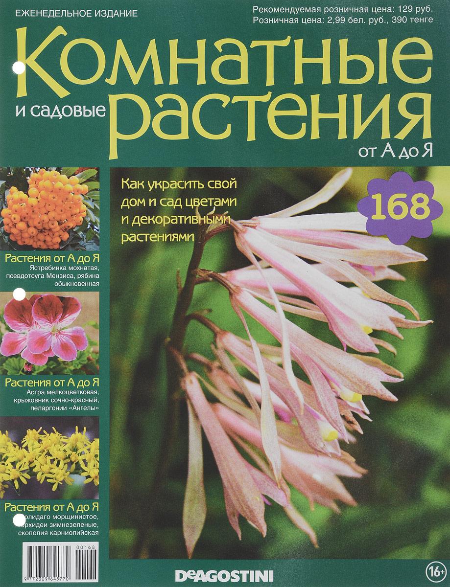 Фото - Журнал Комнатные и садовые растения. От А до Я №168 растения