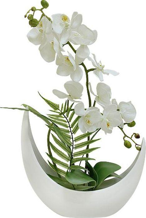 Цветы декоративные Dream Garden Орхидея белая, в вазе little dream garden