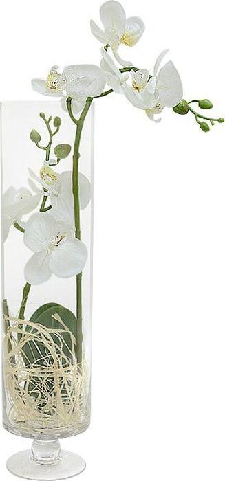 """Цветы декоративные Dream Garden """"Орхидея белая"""", в стеклянной вазе"""