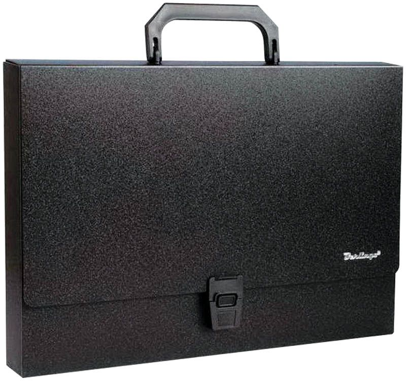 Berlingo Папка-портфель Standard цвет черный академия групп папка портфель а4 с ручкой тачки