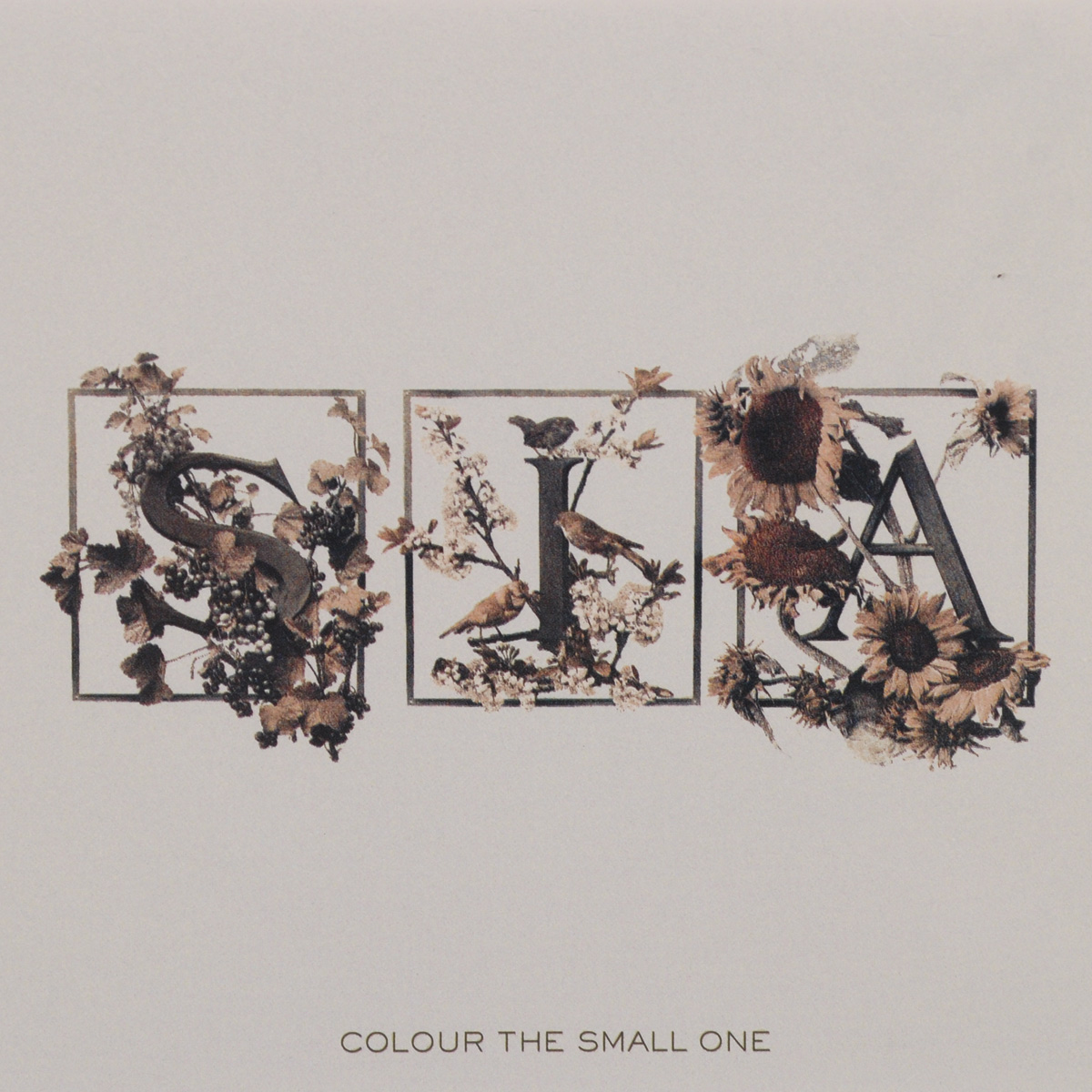 Фото - Sia Sia. Colour The Small One sia sia spotify sessions lp