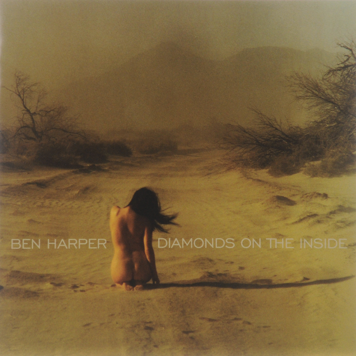 Бен Харпер Ben Harper. Diamonds On The Inside рэнди вестон билли харпер randy weston billy harper the roots of the blues