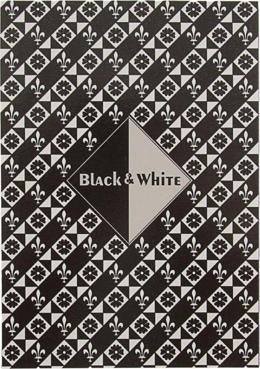 Лилия Холдинг Планшет для эскизов Черный и белый 15 листов планшет 15