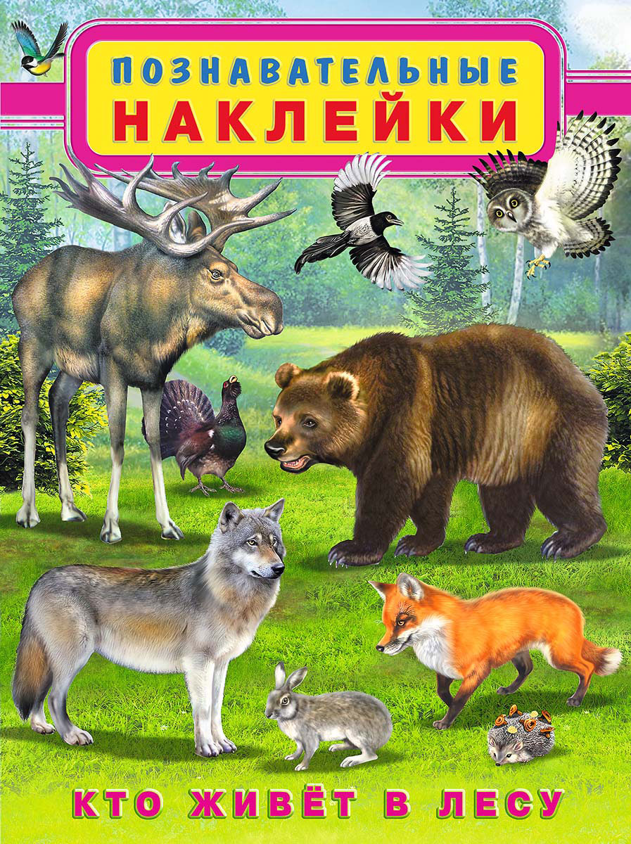 Игорь Приходкин Кто живет в лесу. Познавательные наклейки кто живет в австралии познавательные наклейки