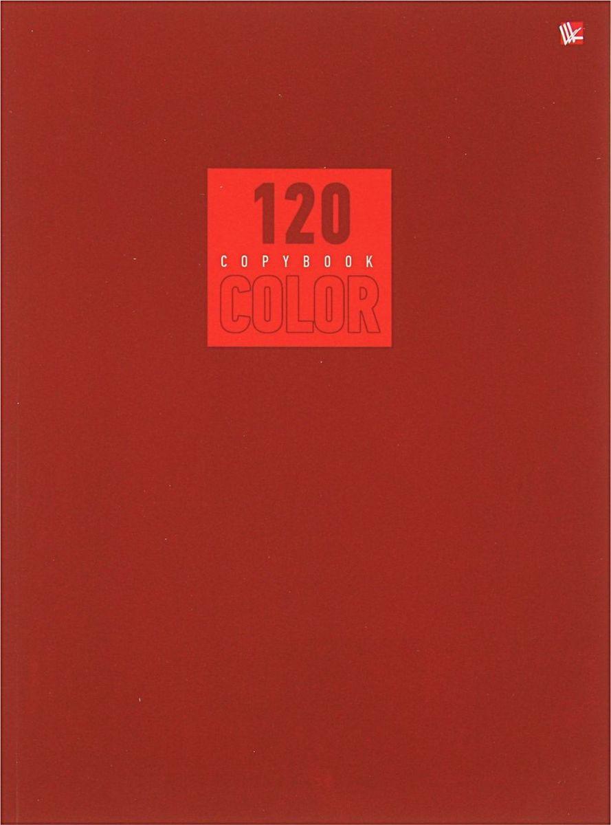 Эксмо Тетрадь Стиль и цвет 120 листов в клетку цвет красный
