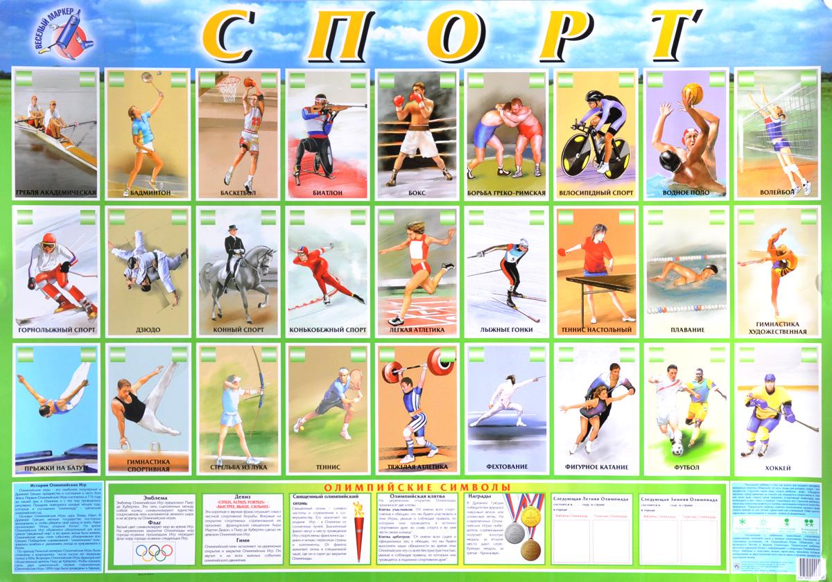 спортивный инвентарь Спорт. Плакат
