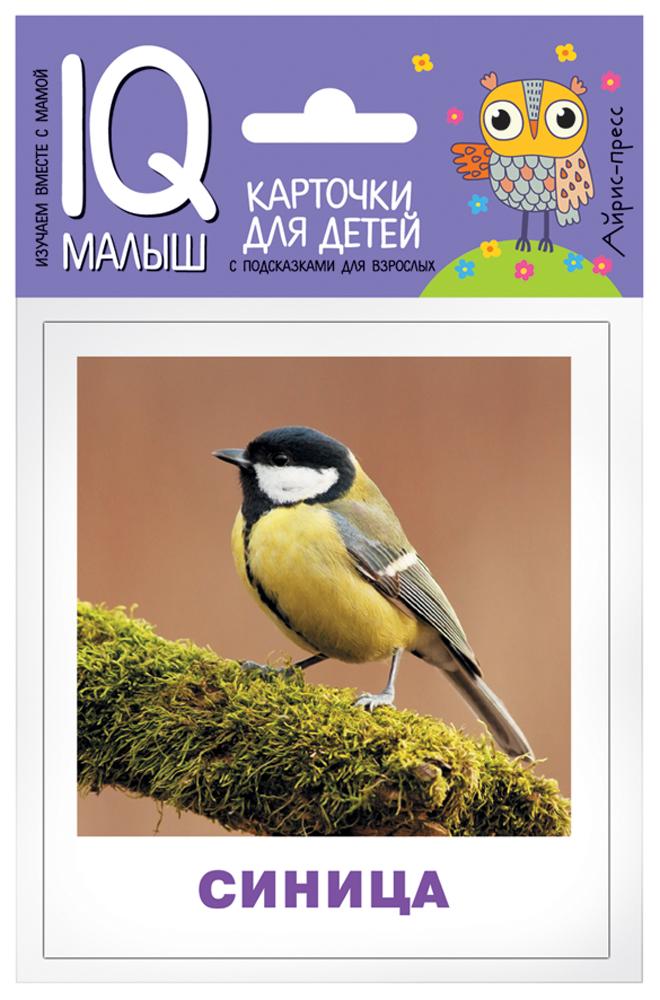 Фото - Айрис-пресс Набор карточек Умный малыш Птицы айрис пресс набор карточек умный малыш транспорт