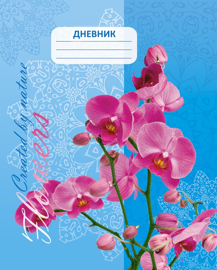 Апплика Дневник школьный Орхидея апплика дневник школьный для старших классов паттерн незабудки с3624 03