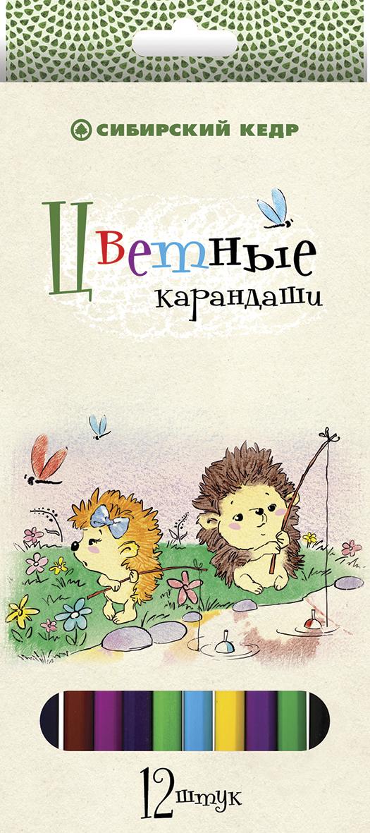 СКФ Набор цветных карандашей Сибирский кедр Ежик 12 шт карандаши цветные сибирский кедр веселые карандаши 12 цветов в блистере ск039 12