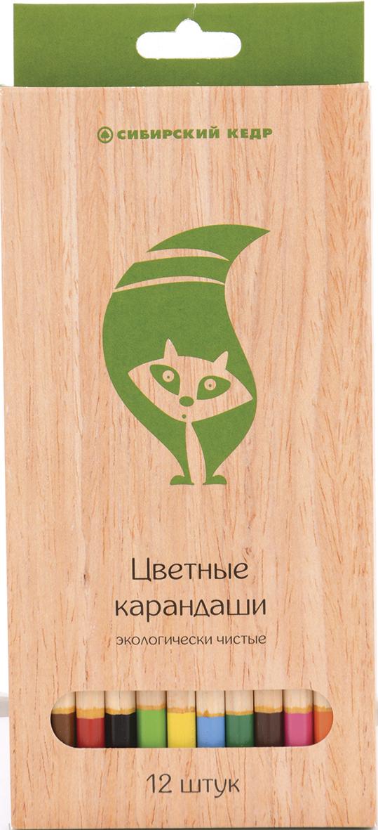 СКФ Набор цветных карандашей Сибирский кедр Eco 12 шт карандаши цветные сибирский кедр веселые карандаши 12 цветов в блистере ск039 12