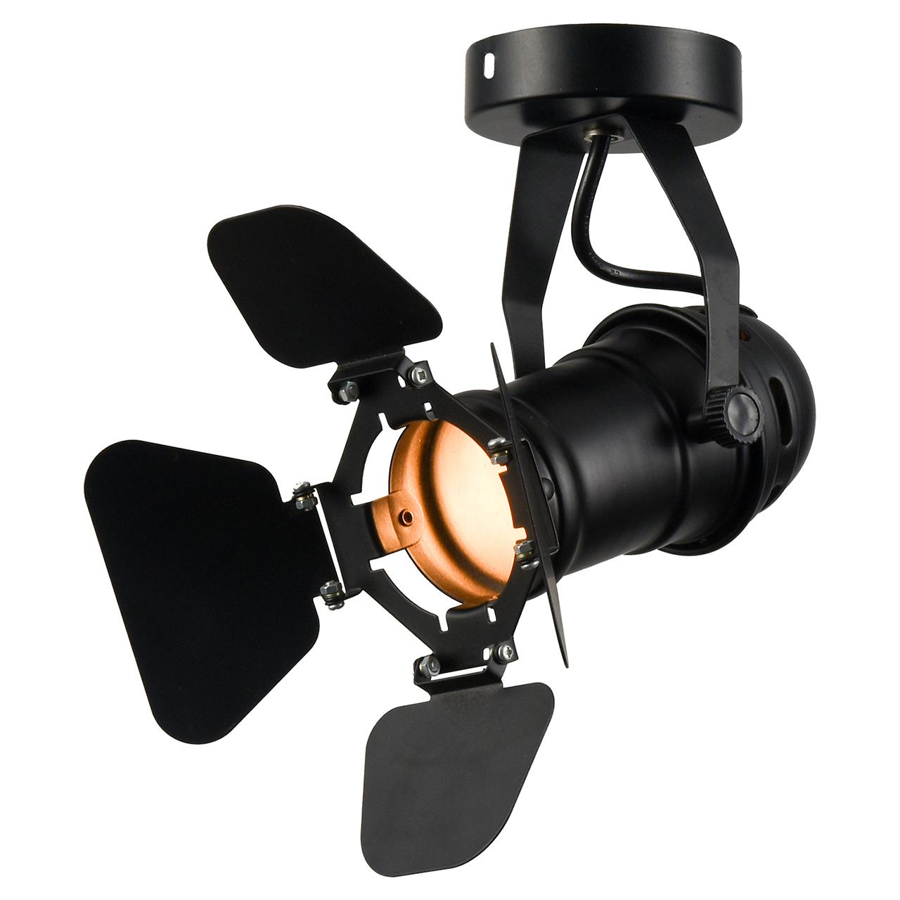 Потолочный светильник Lussole Loft Expression LSP-9838 спот lussole loft expression lsp 9838