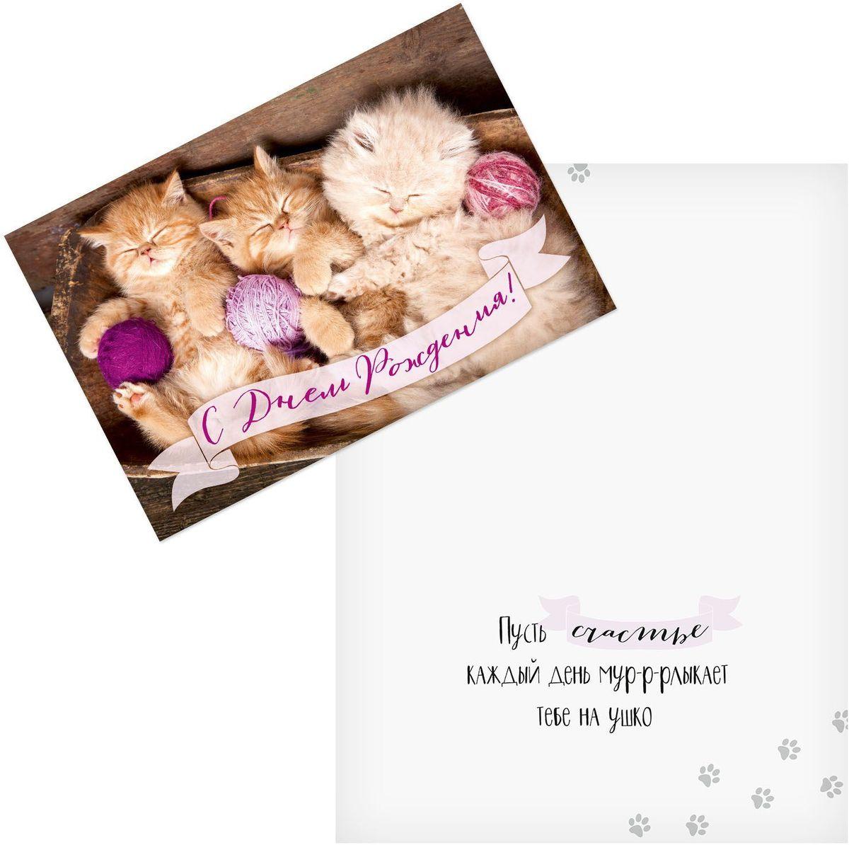 Открытка Дарите cчастье С Днем Рождения. Котята, 12 х 18 см открытка дарите cчастье для тебя в день рождения