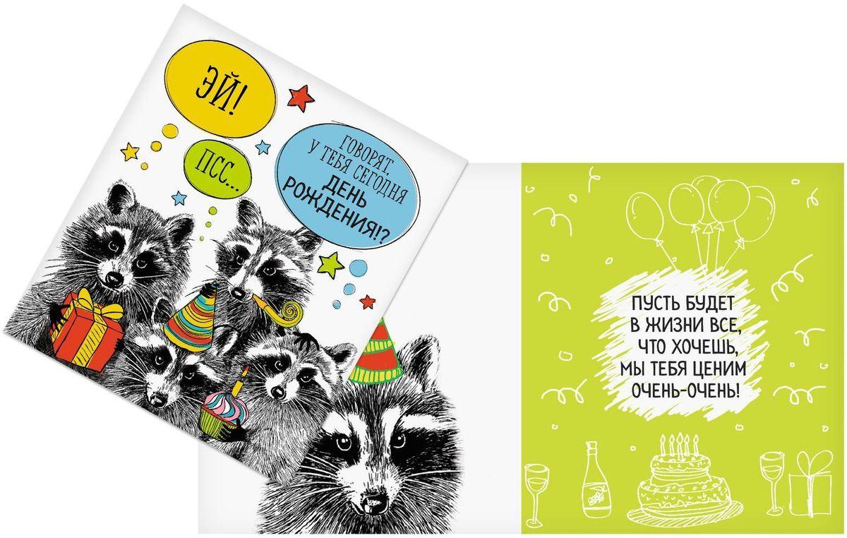Смешные открытки с енотом
