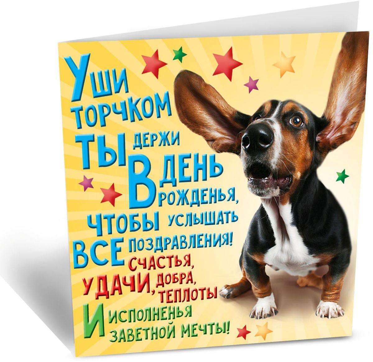 слуховое поздравление с днем рождения выполняется