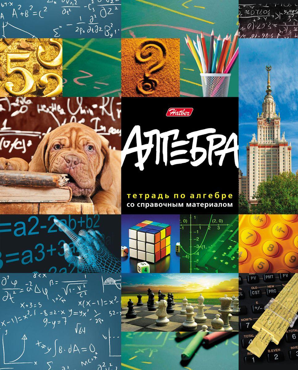 Hatber Тетрадь Мир знаний Алгебра 46 листов в клетку
