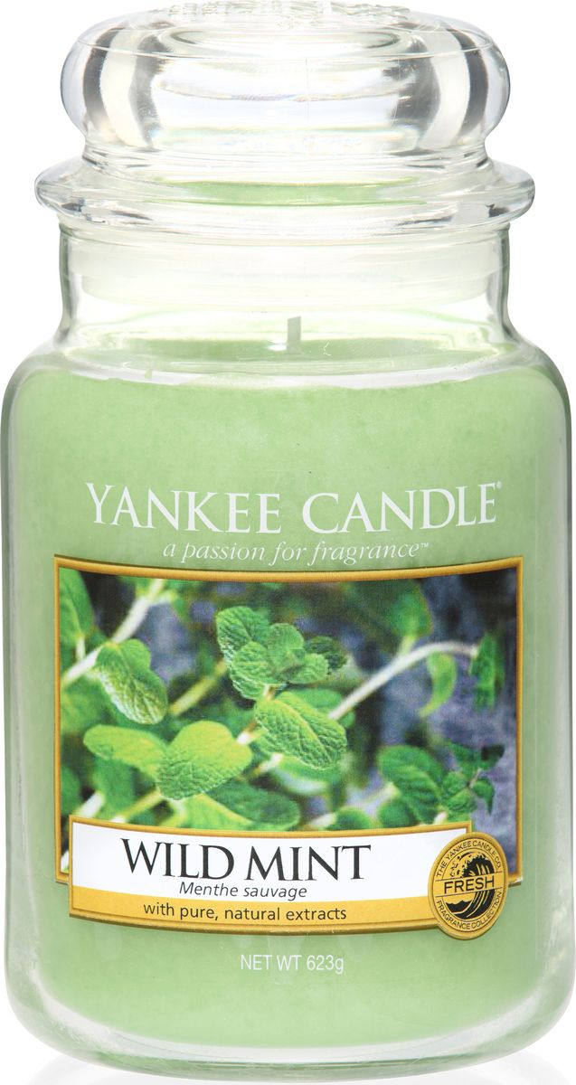 Ароматическая свеча Yankee Candle Дикая мята / Wild Mint, 110-150 ч ароматическая свеча yankee candle дикая мята wild mint 110 150 ч