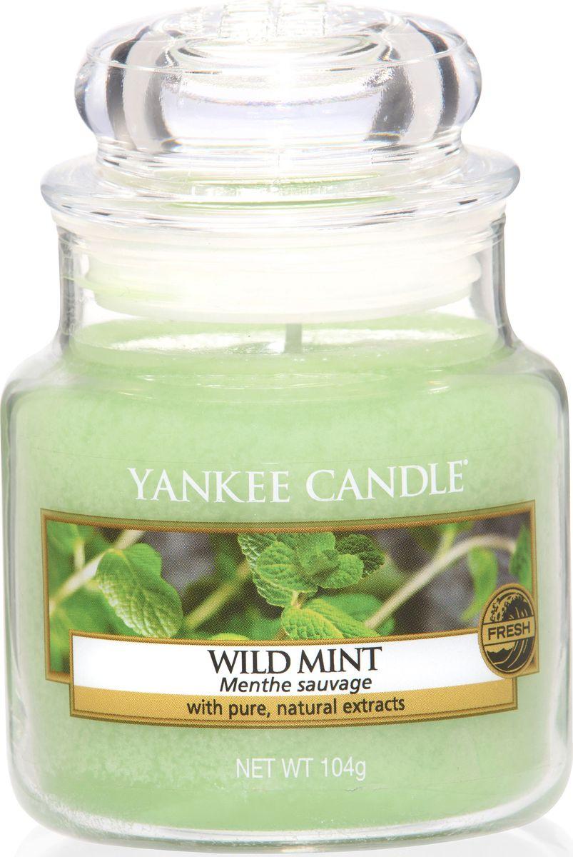 Ароматическая свеча Yankee Candle Дикая мята / Wild Mint, 25-45 ч ароматическая свеча yankee candle дикая мята wild mint 110 150 ч