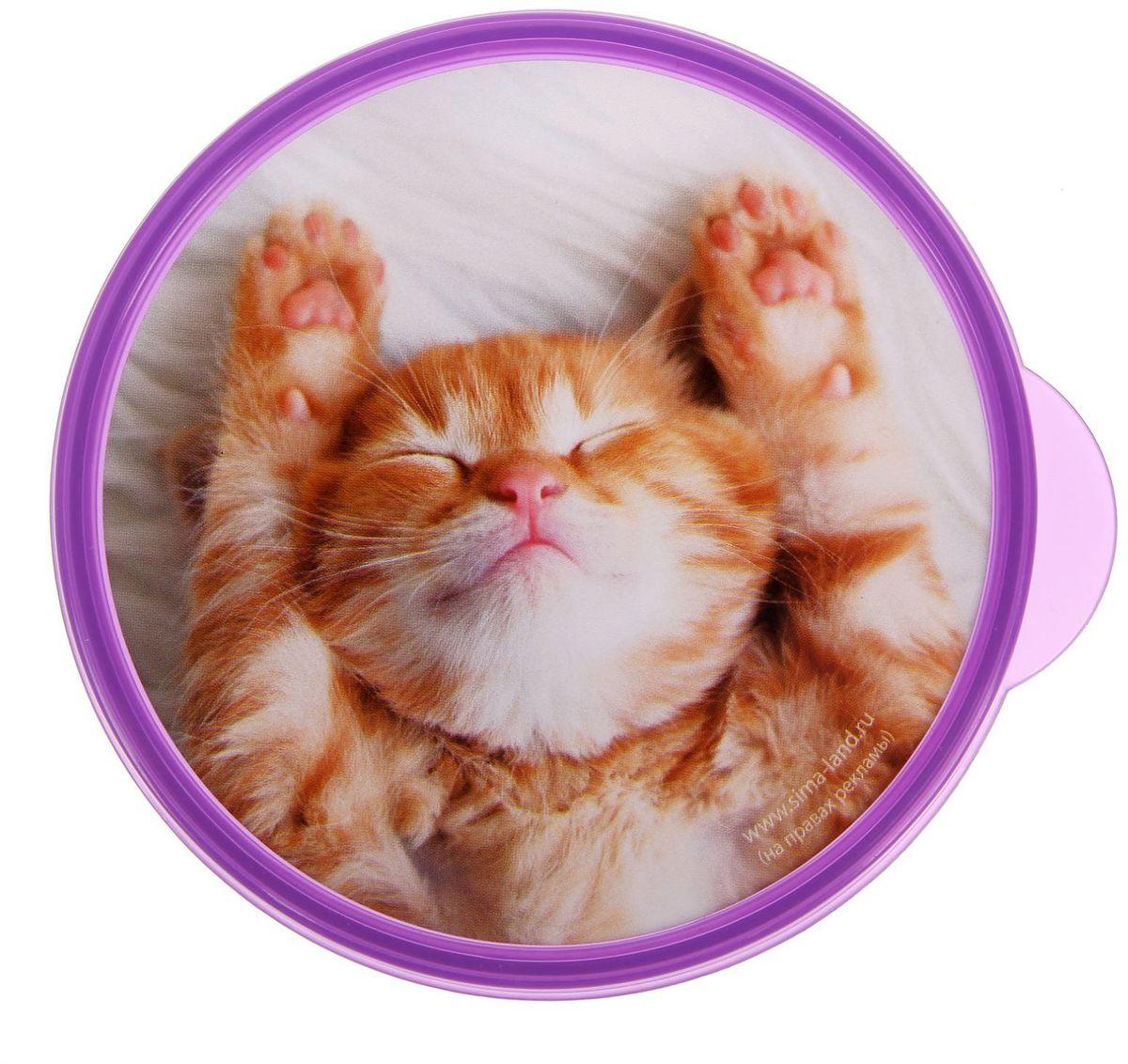 животных круглые стикеры на фото приложение никак могу овладеть