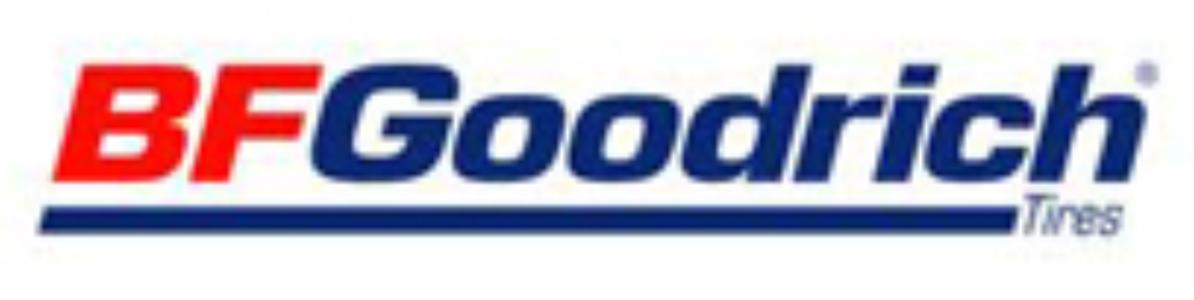 Шины для легковых автомобилей BFGoodrich 632519 225/65R 17 107 (975 кг) S (до 180 км/ч) шины для легковых автомобилей bridgestone 588687 245 65r 17 107 975 кг s до 180 км ч