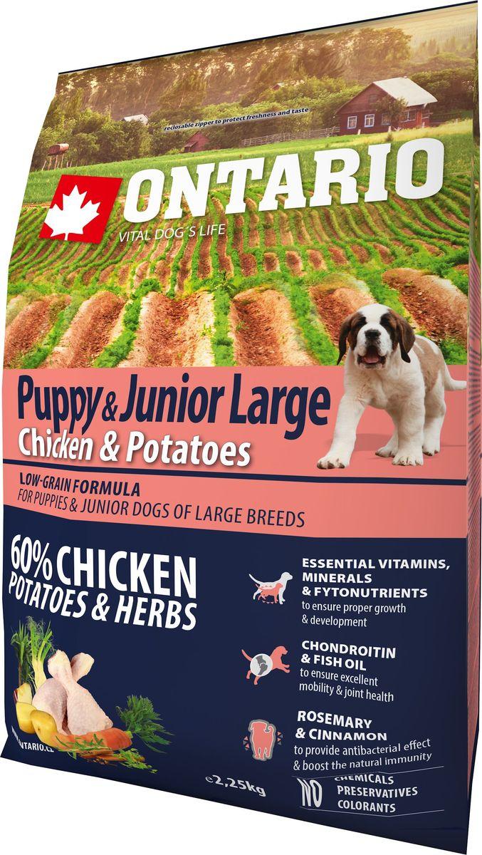 """Корм сухой Ontario """"Puppy & Junior Large"""" для щенков крупных пород, с курицей и картофелем, 2,25 кг"""