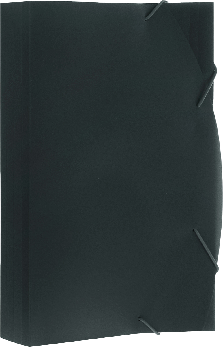 Albion Папка на резинках Basic цвет зеленый AL10908 папка для труда albion бабочки а4