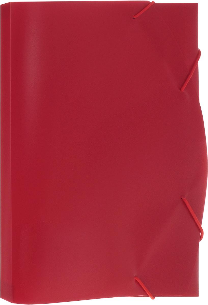 Albion Папка на резинке Basic цвет красный папка для труда albion бабочки а4