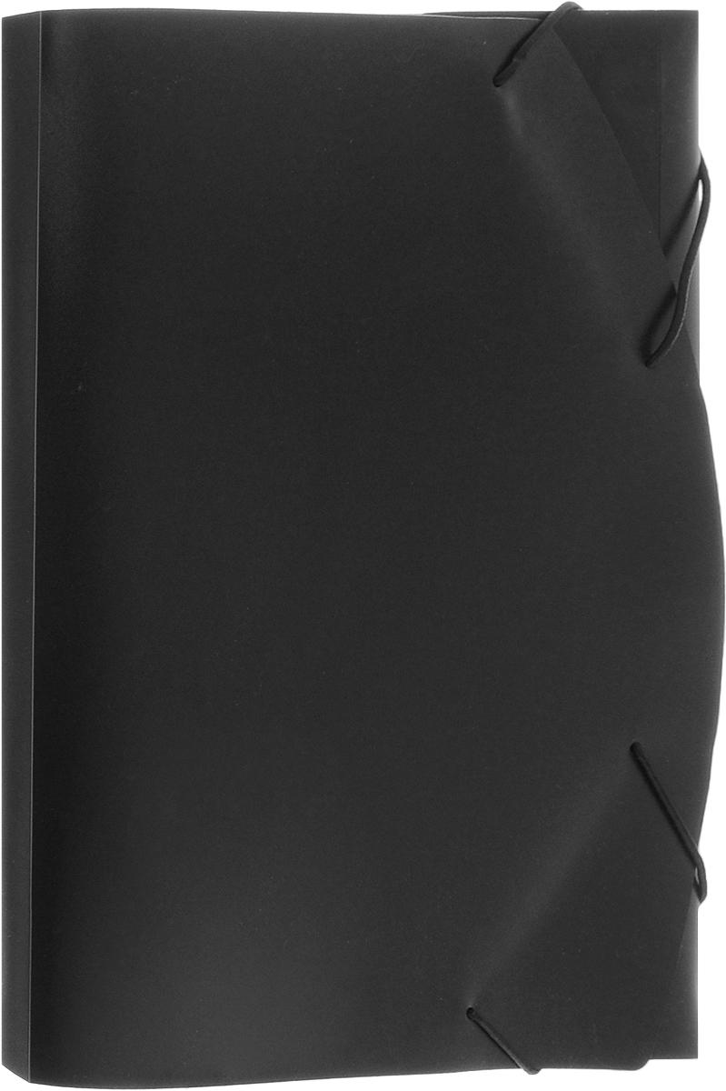 Albion Папка на резинке Basic цвет черный папка для труда albion бабочки а4