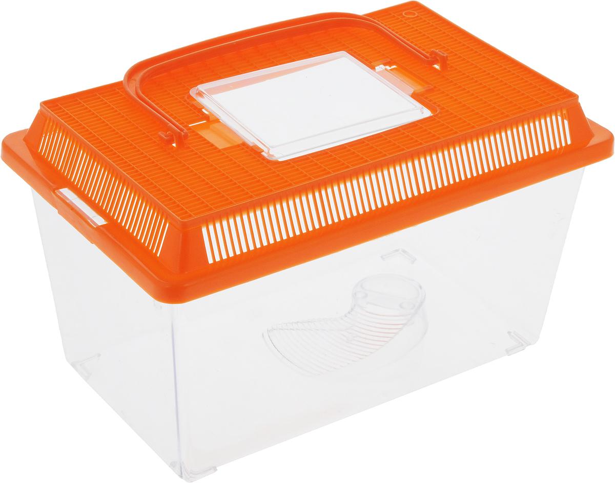 Контейнер-переноска для рептилий Repti-Zoo, цвет: прозрачный, оранжевый, 27 х 17 х 16,8 см контейнер giaretti цвет кремовый прозрачный 29 2 х 17 х 11 см