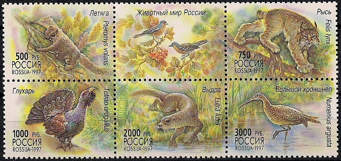 1997. Животный мир России. № 376 - 380сц. Сцепка все цены
