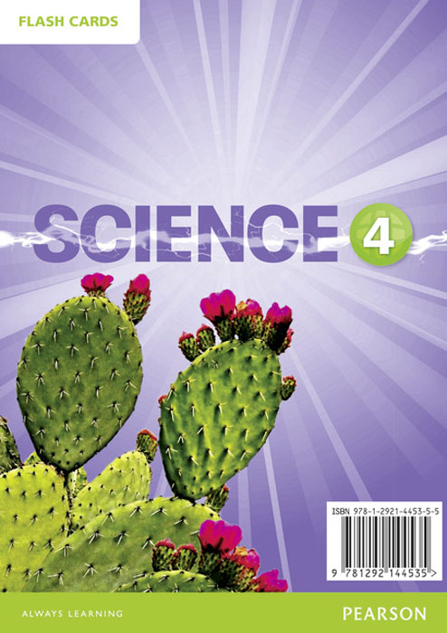 Big Science: Level 4: Flashcards (DVD) at home in the rain forest