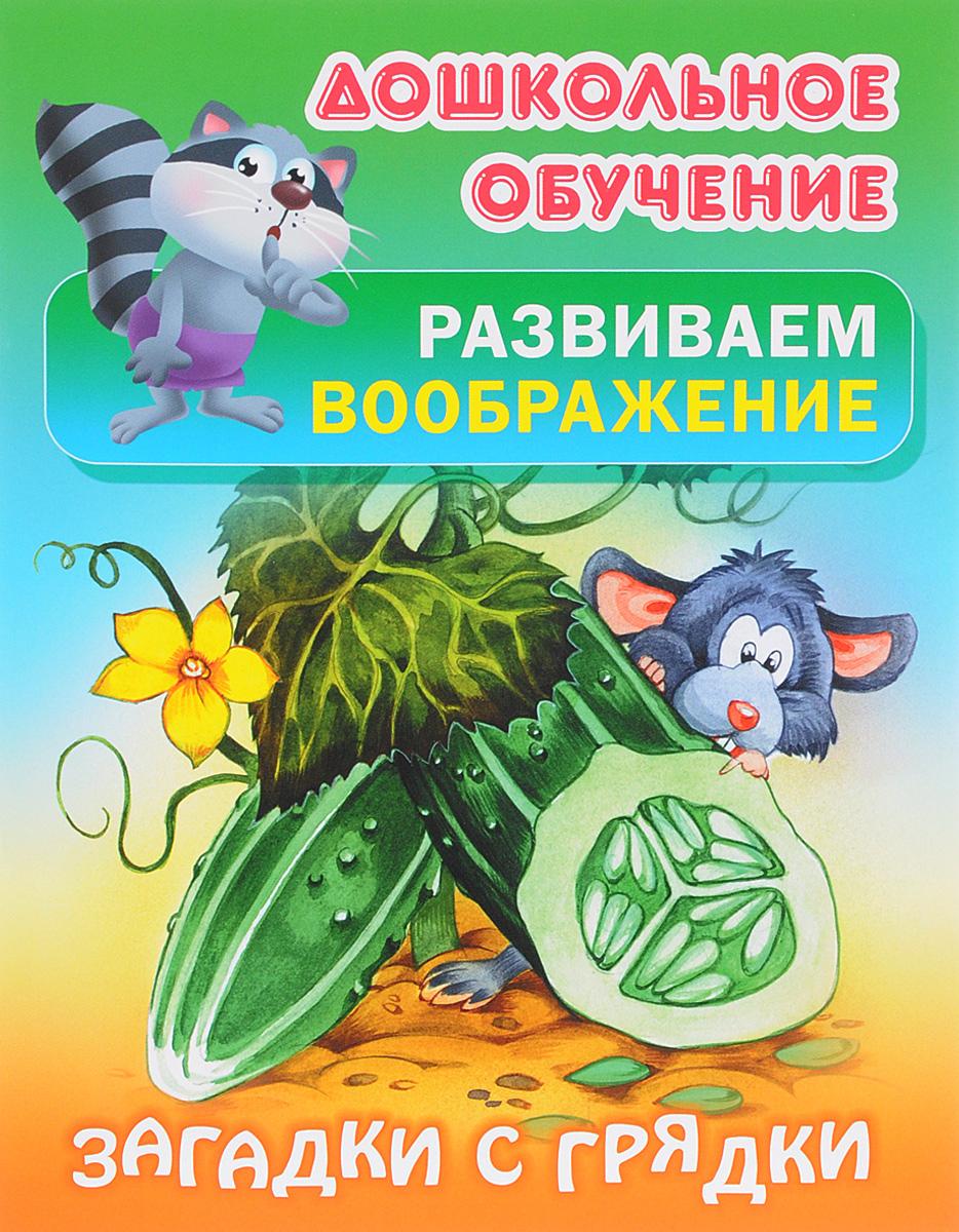 Загадки с грядки. Русские народные загадки ограждение для грядки