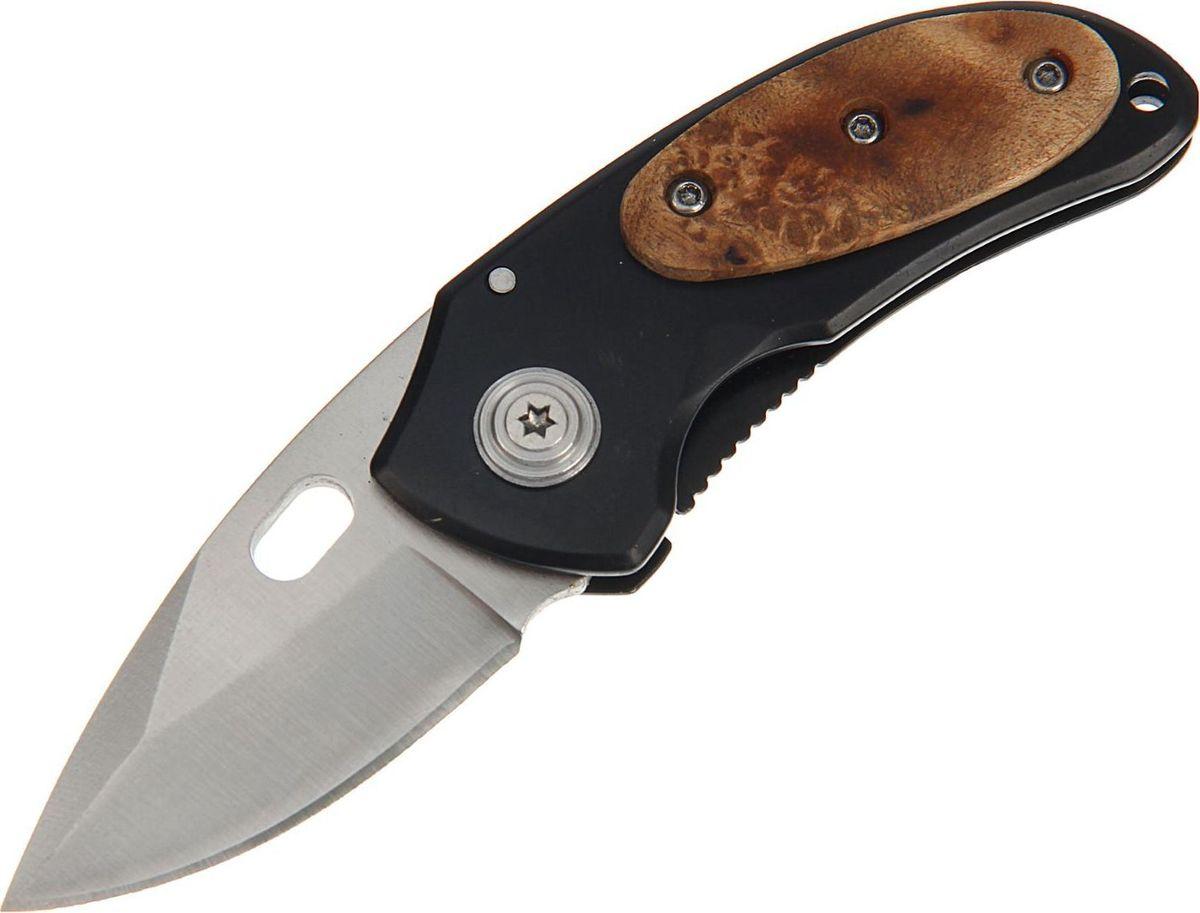 Нож перочинный, длина клинка 5 см. 267154