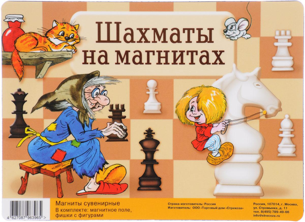 Шахматы на магнитах. Игра (+ магнитное поле) а е молотников артем генкин 0 захват корпоративные шахматы игра на выживание