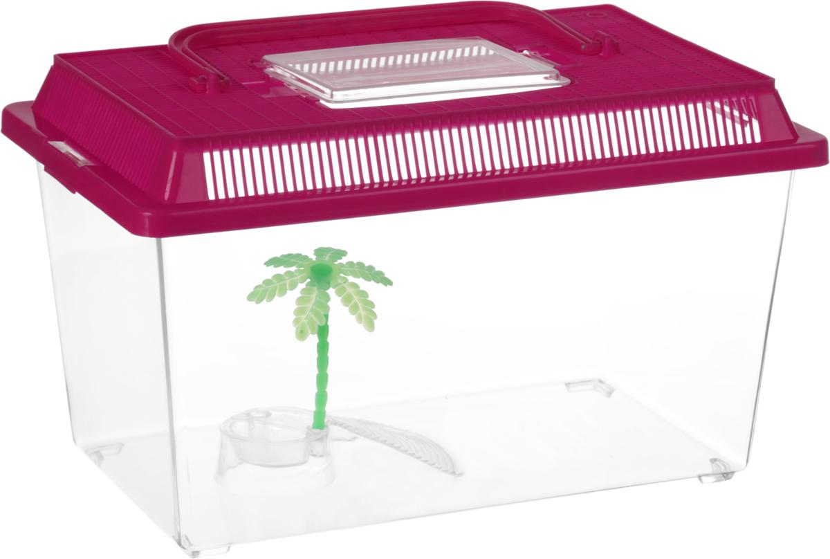 Контейнер-переноска для рептилий Repti-Zoo, цвет: прозрачный, малиновый, 27 х 17 х 16,8 см коврик repti zoo с подогревом без терморегулятора 40вт 40 60см
