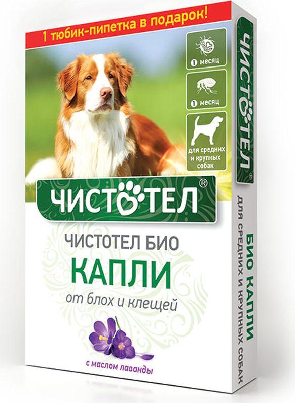 Капли Чистотел Био, с лавандой, для средних и крупных собак, от паразитов, 2 х 2,5 мл капли чистотел био с лавандой для средних и крупных собак от паразитов 2 х 2 5 мл