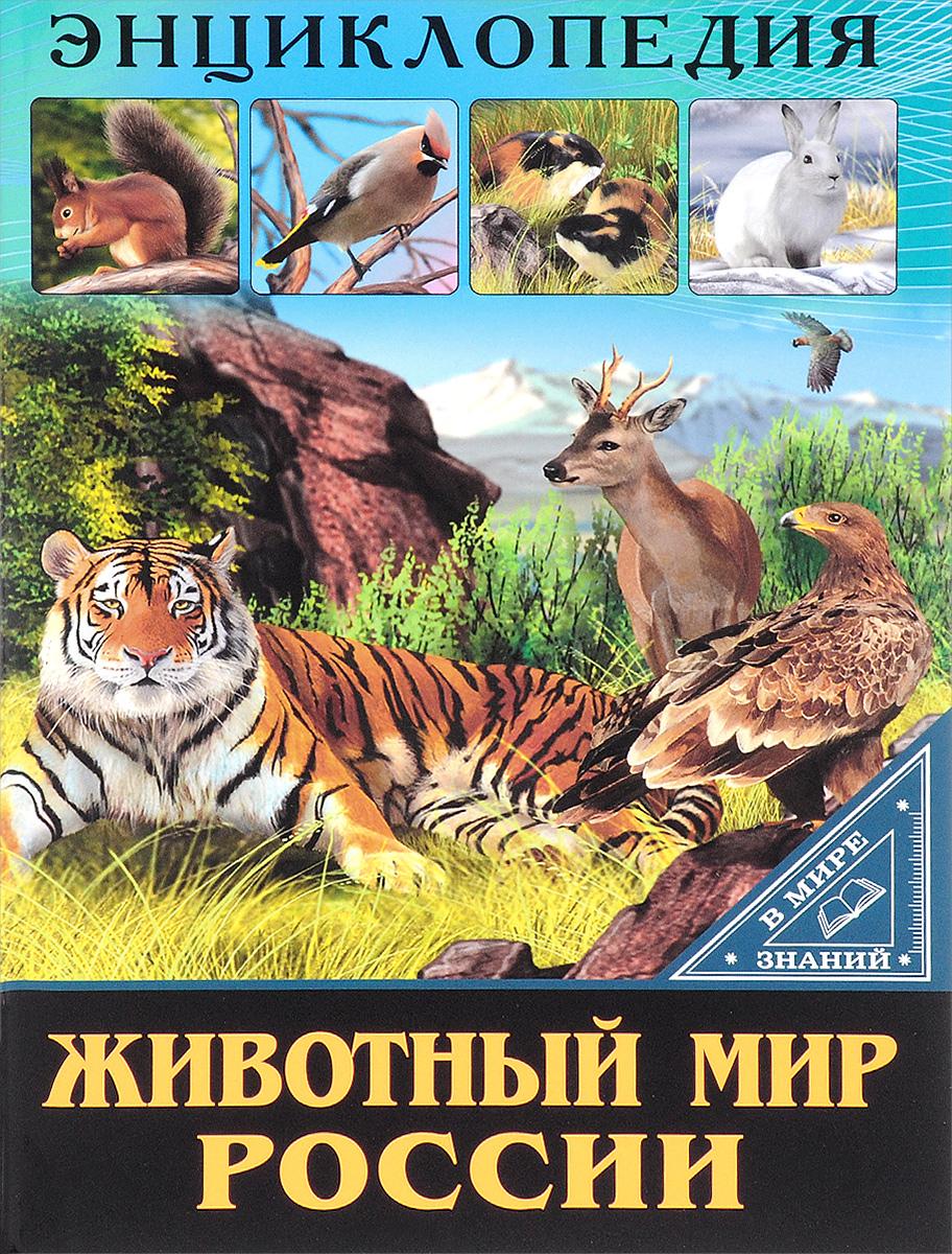 Оксана Балуева Животный мир России
