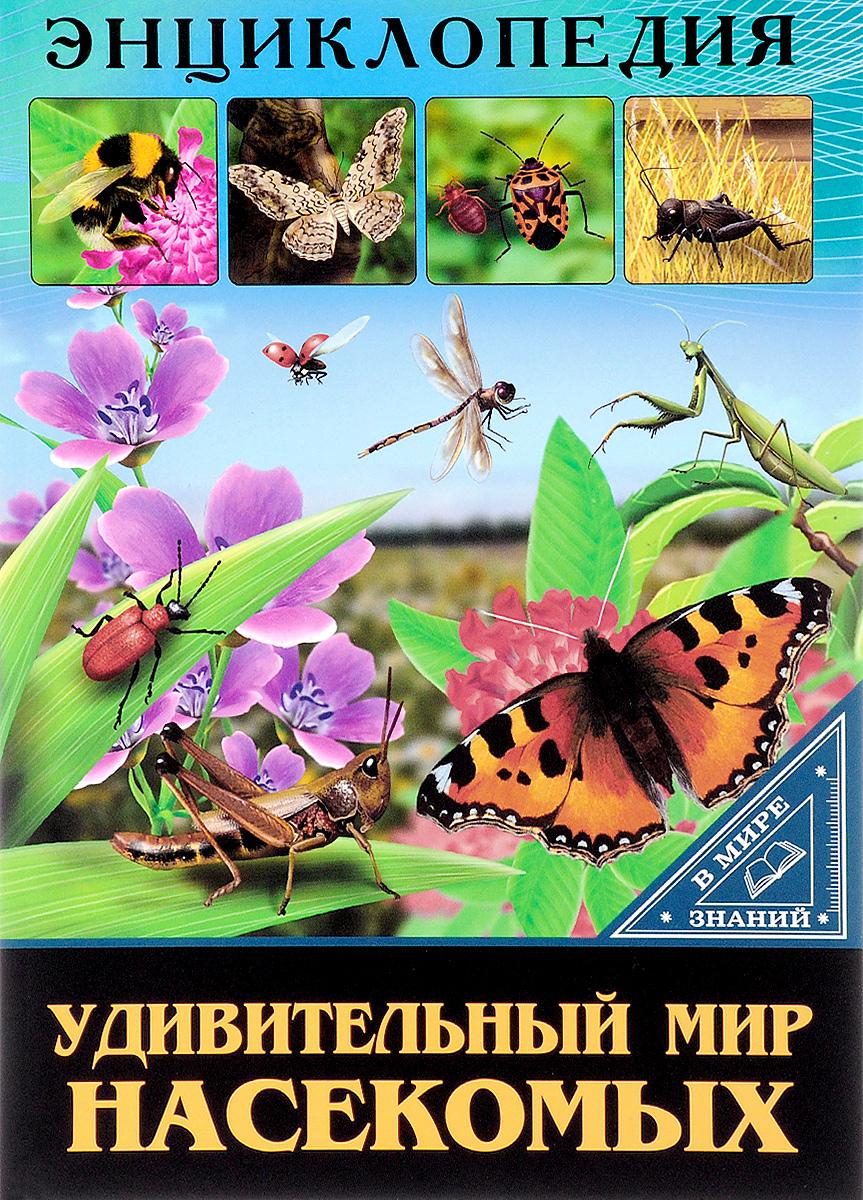 Людмила Соколова Удивительный мир насекомых