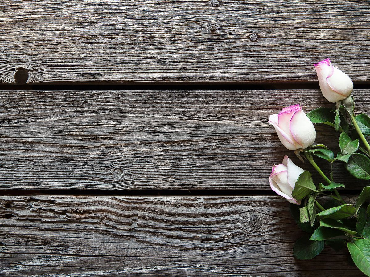 Открытка, картинки цветы фотофон