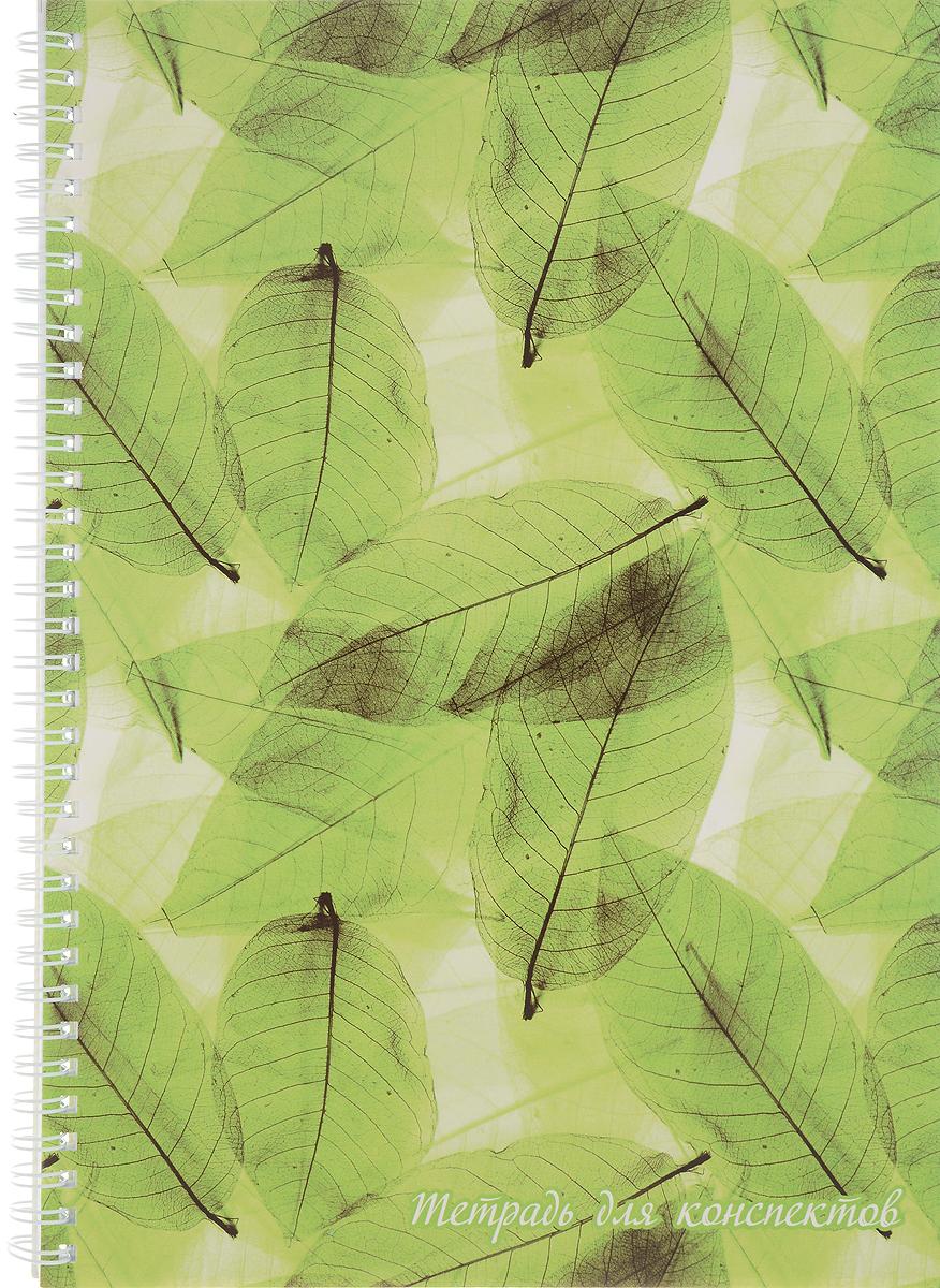 Фолиант Тетрадь для конспектов 80 листов в клетку ТДК-3