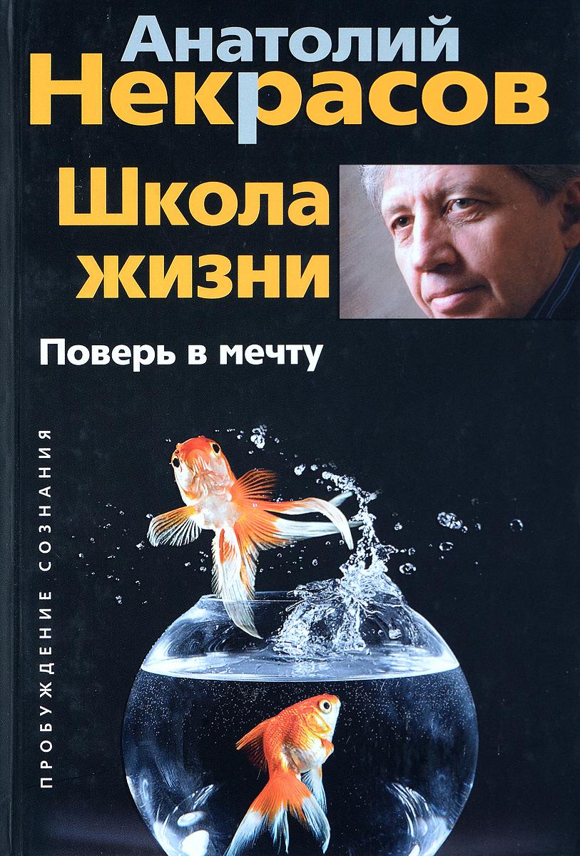 Анатолий Некрасов Школа жизни. Поверь в мечту