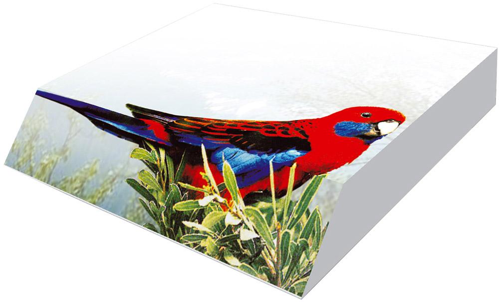 Фолиант Блок для записей Попугай 9 х 11 см 300 листов цена в Москве и Питере