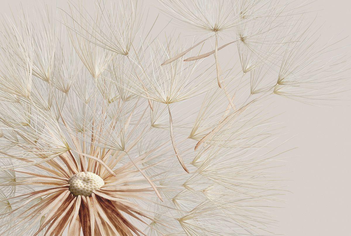 Фотообои флизелиновые Milan Свежий ветер, текстурные, 4 х 2,7 мM 456Текстурные флизелиновые фотообои Milan Свежий ветер позволят создать неповторимый облик помещения, в котором они размещены. Milan — дизайнерская коллекция фотообоев и фотопанно европейского качества, созданная на основе последних тенденций в мире интерьерной моды. Еще вчера эти тренды демонстрировались на подиумах столицы моды, а сегодня они нашли реализацию в декоре стен. Фотообои Milan реализуют концепцию доступности Моды для жителей больших и маленьких городов. Фотообои Milan — мода для стен, доступная каждому! Монтаж: Клеи Quelid Murale, Хенкель Metylan Овалид Т и Pufas Security GK10 . Принцип монтажа: стык в стык. Рекомендуем!
