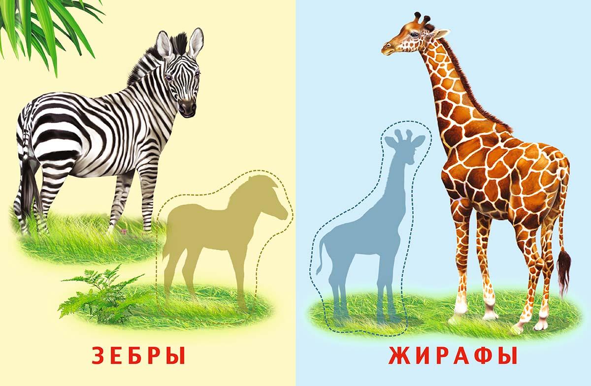 Животные саванны картинки для аппликации