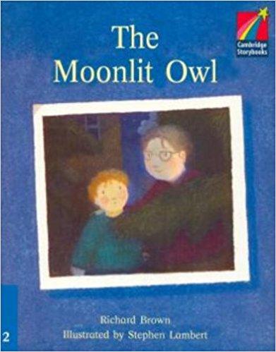 Moonlit Owl: Level 2 moonlit owl level 2