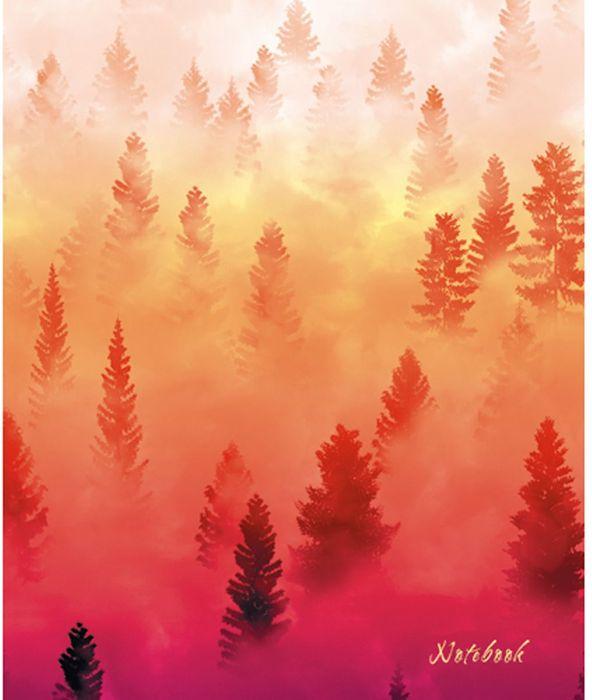 Канц-Эксмо Блокнот Графика Туман над лесом 120 листов в клетку формат А5 цена в Москве и Питере
