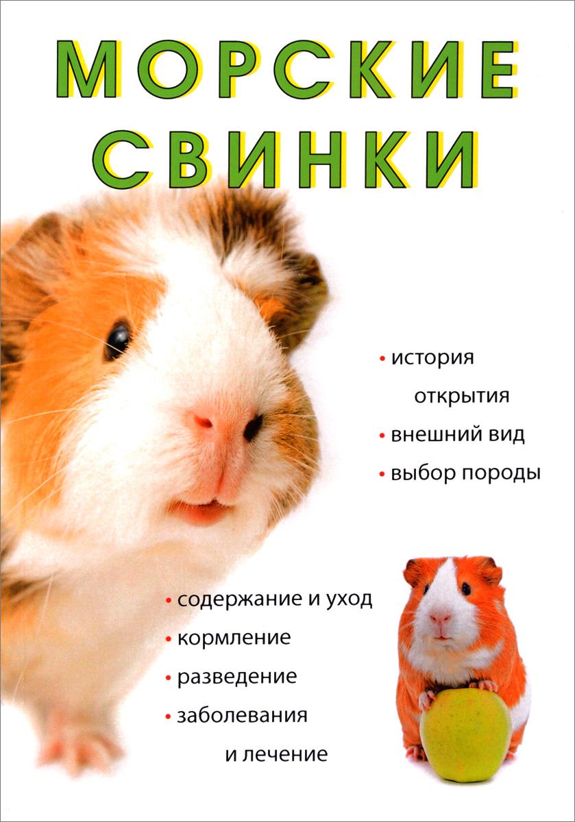 Л. Миронов Морские свинки