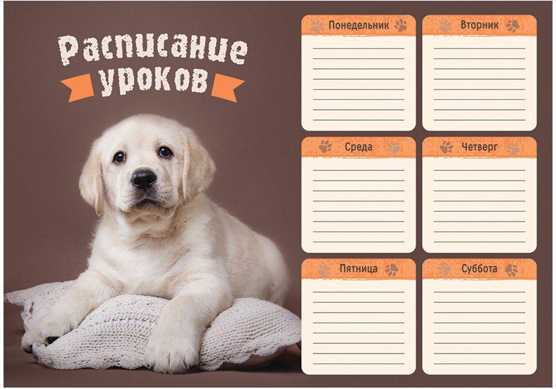 Открытки, расписание уроков с собаками шаблоны распечатать