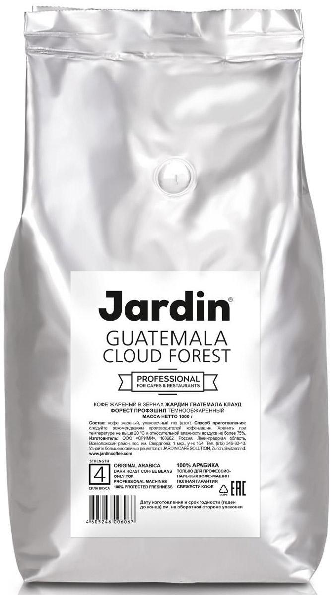 Jardin Guatemala Cloud Forest кофе в зернах, 1 кг (промышленная упаковка) jardin crema кофе в зернах 1 кг промышленная упаковка